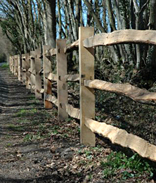 Oak post and rail fence, Orlestone Forest